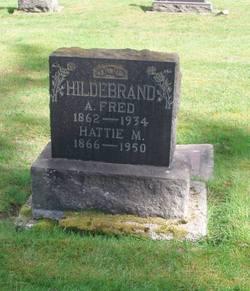Andrew Frederick Hildebrand