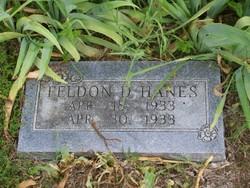 Feldon D Hanes