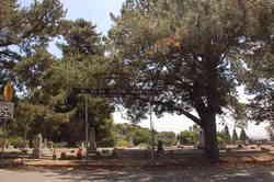 Mount Saint Joseph Cemetery