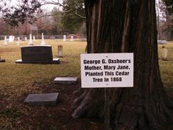 George G Oxsheer