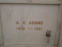 A V Adams