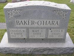 Charles Wellington Baker