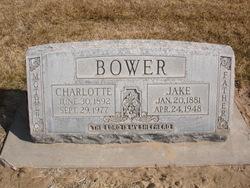 Charlotte Bower
