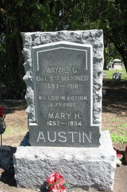 Wayne G. Austin