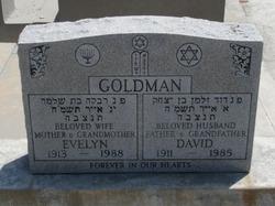 David Saul Goldman