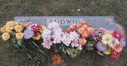Harry J. Ludwig