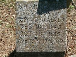 Charles P Walker, Jr