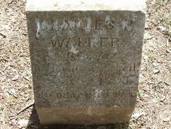 Charles P Walker