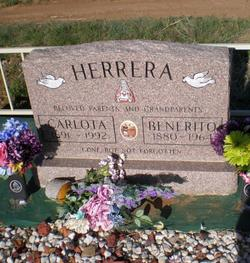 Carlotta Herrera