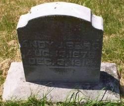 Andy J Berg