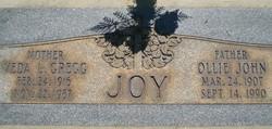 Ollie John Joy