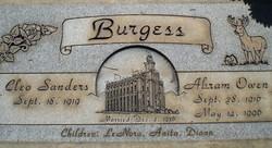 Abram Owen Burgess