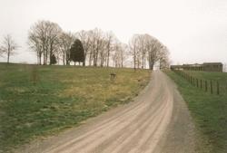 Bryan-Hovis Cemetery