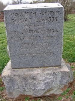 Sarah E. Johnson