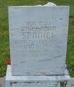 Marie Adam Spaniel