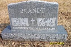 Mervin L. Brandt