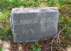 Clarence Eugene Adams