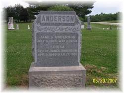 Louisa <i>Bell</i> Anderson