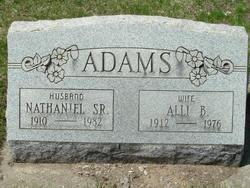 Allie B Adams