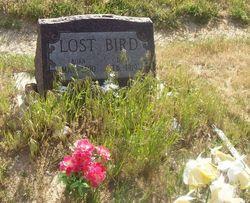 Zintkala Nuni Lost Bird