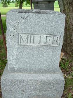 William D Miller