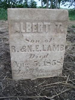 Albert T. Lamb