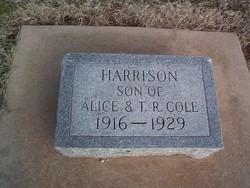 Harrison Lambert Cole