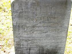 John M. Lynn