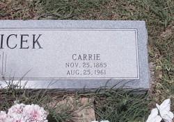 Carrie Belicek
