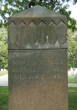 Mary J. Briggs