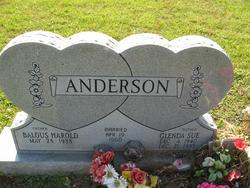 Glenda Sue <i>Collins</i> Anderson