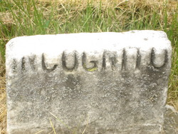 Angelina Incognito