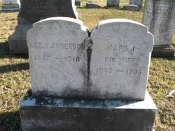Mary J <i>Castner</i> Anderson