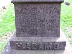 Edward P Adams