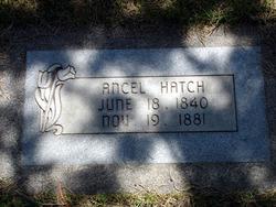 Ancel Hatch