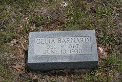 Celia Ann <i>Stephens</i> Barnard