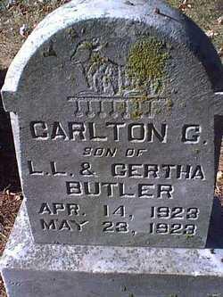 Carlton G Butler