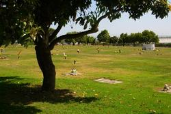 Pajaro Valley Memorial Park