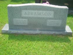 Sadie <i>H.</i> Abramson