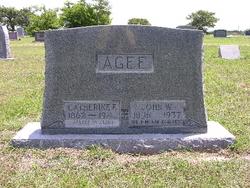 John William Agee