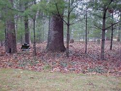 Brubaker-Huffman Family Cemetery