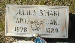 Julius Bihari