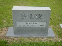 James W. DeLay