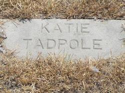 Katie Tadpole