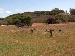 Mission La Purisima Concepcion Cemetery