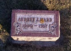Audrey E Ward