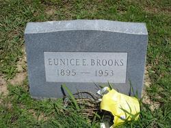 Eunice Elva <i>Wisdom</i> Brooks