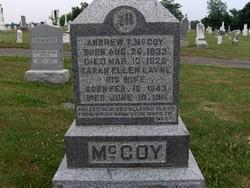 Andrew T. McCoy