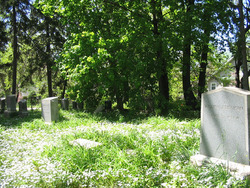 Biddison Family Cemetery