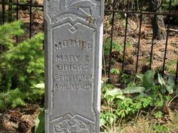 Mary E. <i>Briggs</i> Black